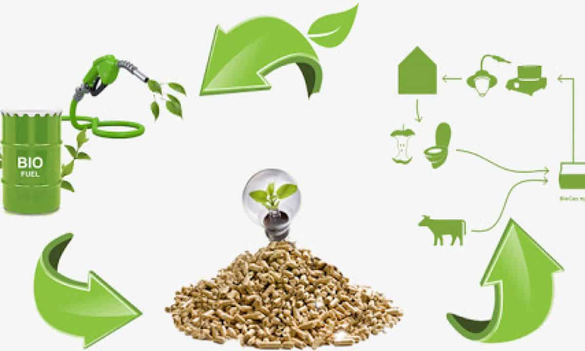 GCT Guide to Bioenergy; Waste-to-Energy | Green City Times